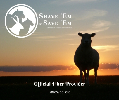 shave to save official fiber provider social media graphic