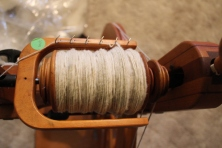 Tunis spins well, even for us novice spinners!