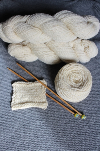 We have our fleeces processed into lovely, versitle yarn.